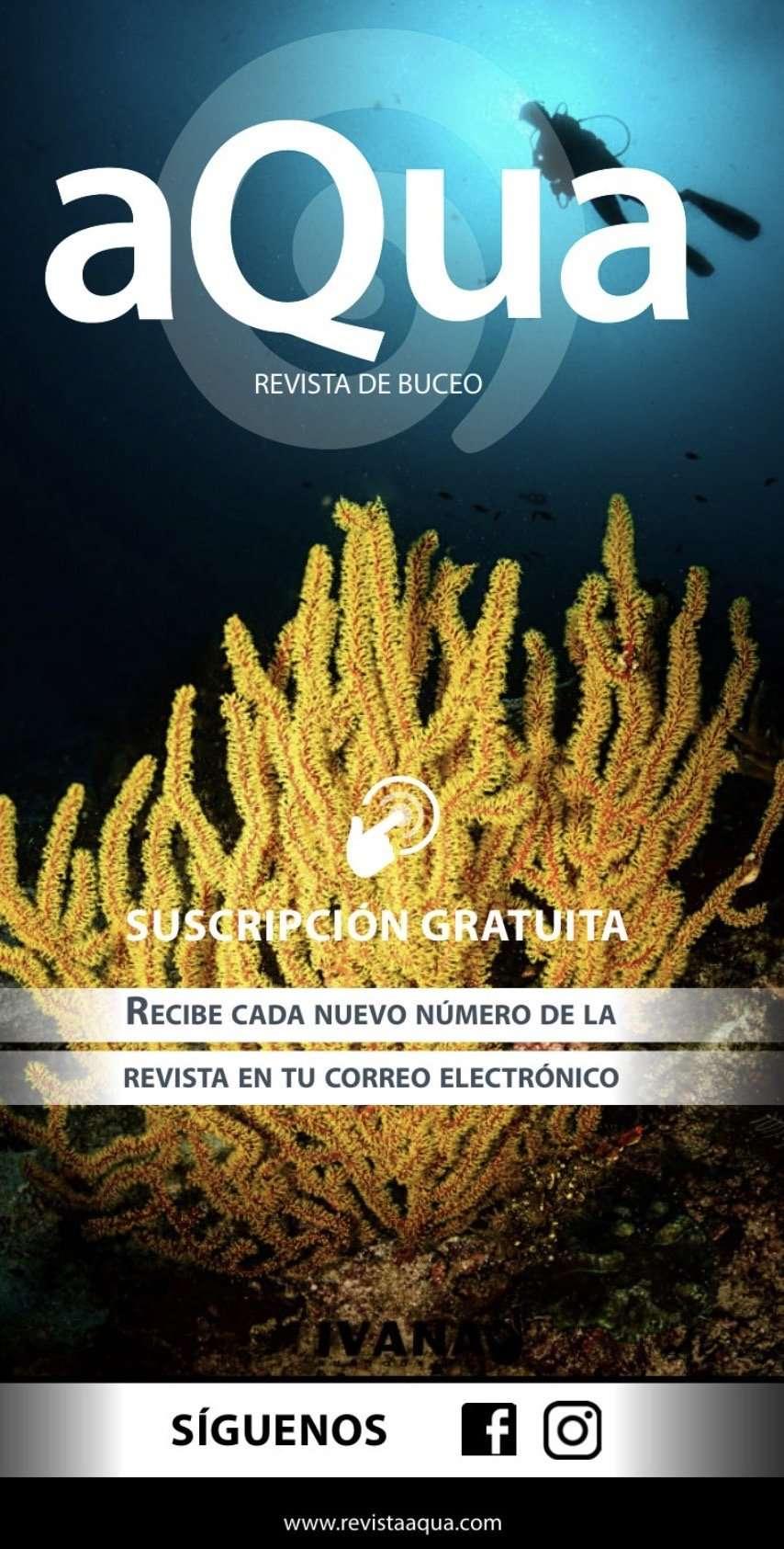 Ver Revista aQua